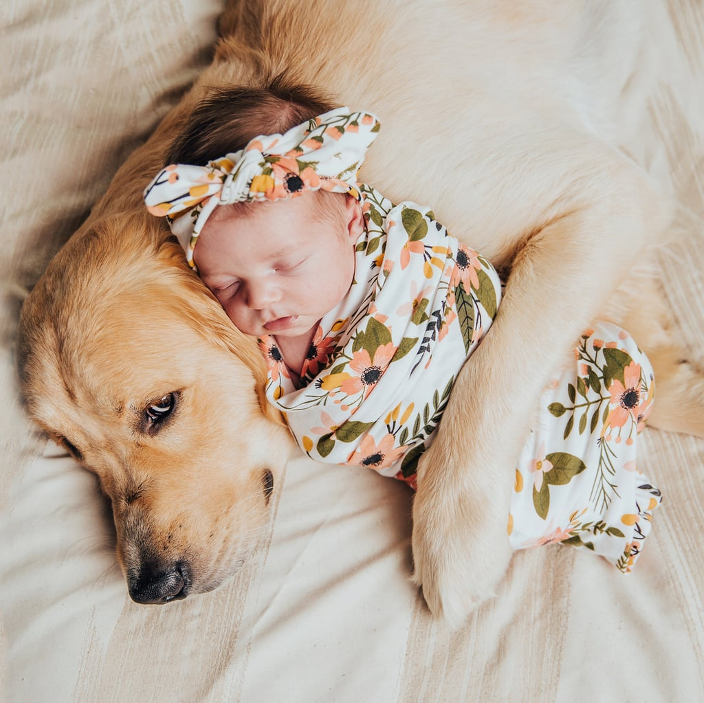 21 Photos of Dogs and Babies Napping Together That Will Make Your Heart Physically Ache