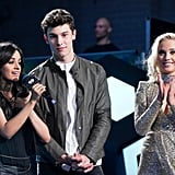 Camila Cabello and Shawn Mendes's Cutest Pictures