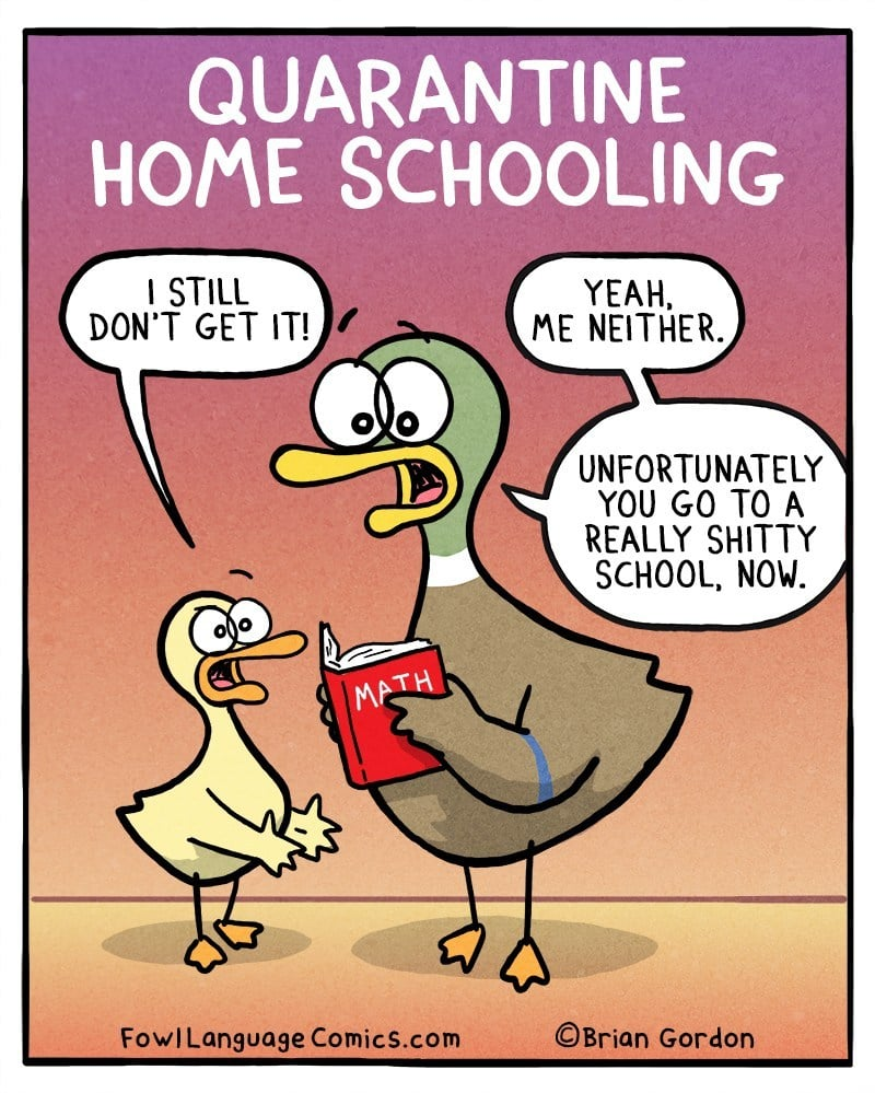This Comic About Homeschooling Kids