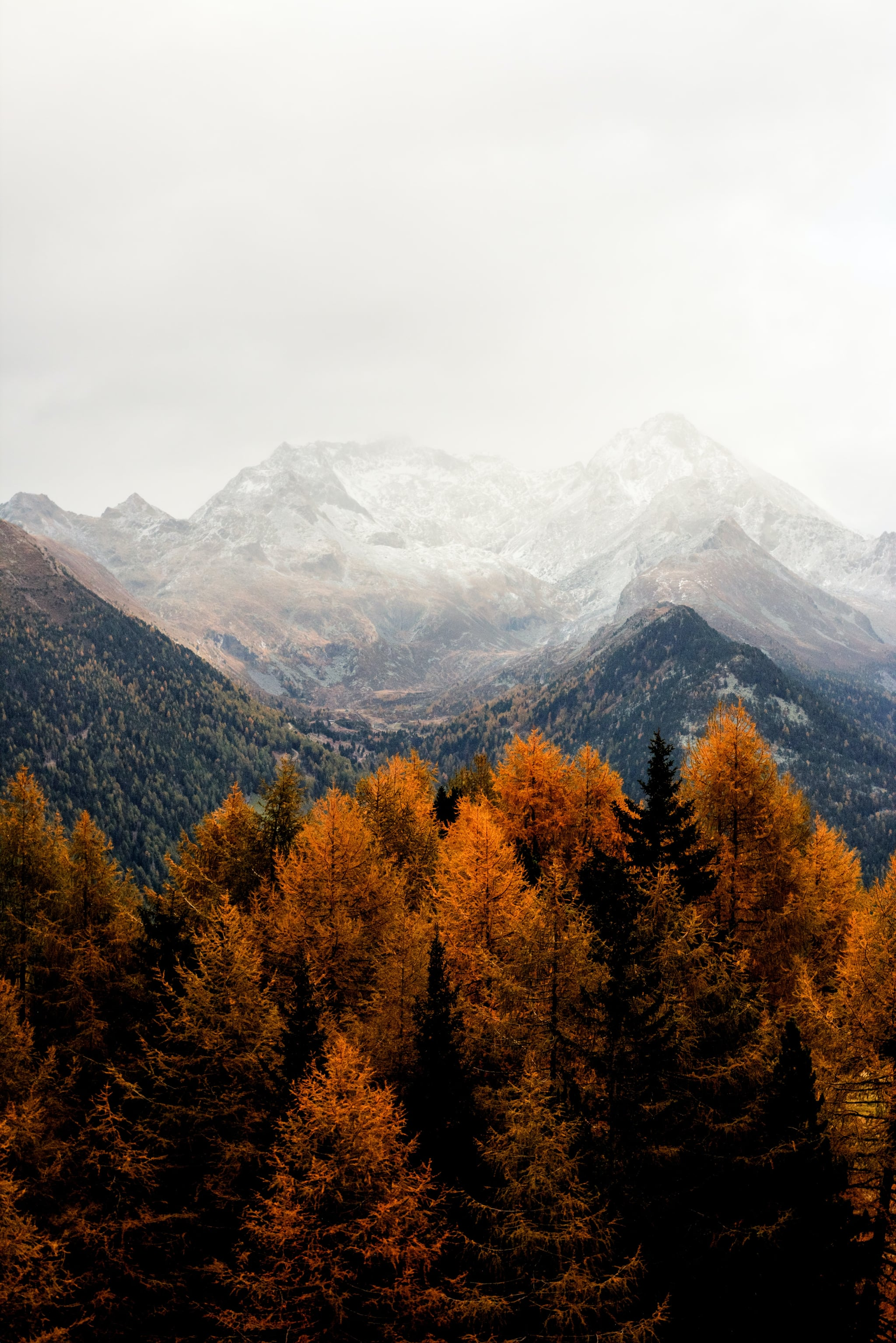 Best iOS 21 Fall Wallpapers For Your Home Screen Aesthetic ...