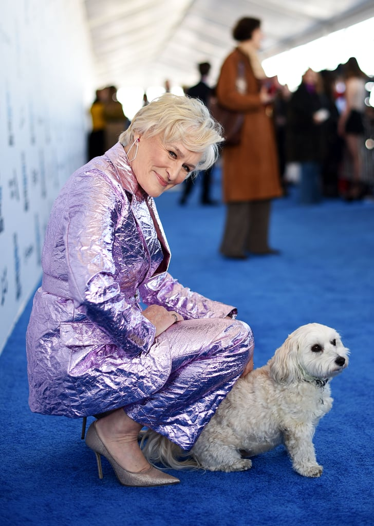 "The Independent Spirit Awards are off to a doggone good start, thanks to Glenn Close! On Saturday, the 71-year-old award-winning actress showed up to the event in Santa Monica, CA, with none other than her dog, Pip. The cute Havanese pup — which Glenn has called her ""only son"" — modelled alongside his mom, who rocked a purple metallic ensemble with a pair of shades. Glenn received a Spirit nomination for best female lead for her role in The Wife, but we'd argue that she deserves another honour for bringing such an adorable date to the gathering — and for looking so fierce herself. We're just hoping she does the same thing at the Oscars on Sunday! If you find yourself wanting more of Pip, don't worry — he has his own Instagram account.       Related:                                                                                                           Glenn Close's 101 Dalmatians Joke Was So Clever, It Made Jimmy Fallon Drop to the Floor"