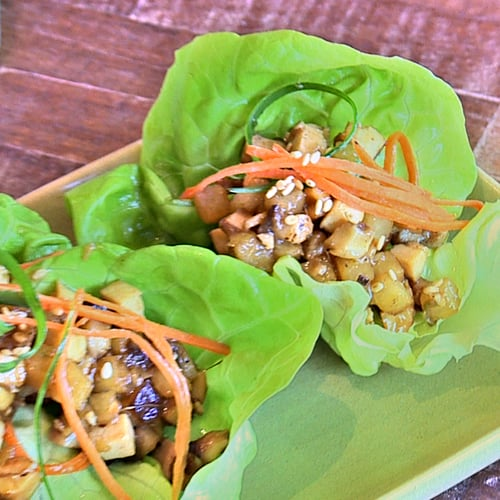 True Food Kitchen Food dr. weil's vegetarian lettuce wraps from true food kitchen fight
