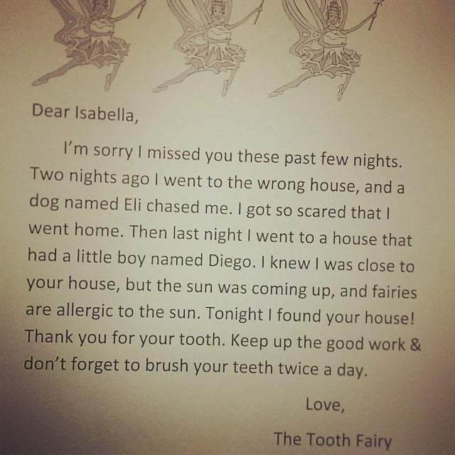 Superlate And Full Of Excuses Fairy Funny Tooth Fairy