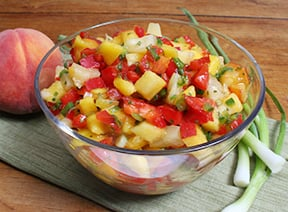 fruit salsa the fruit company