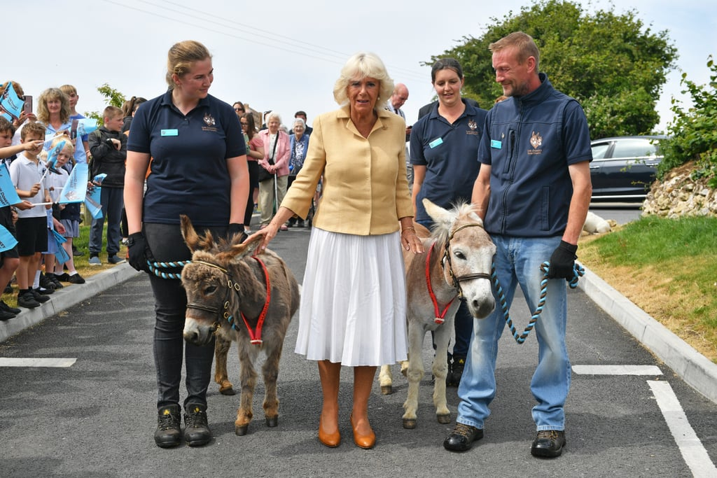 Congratulations are in order for Camilla Parker Bowles, who celebrated her 72nd birthday at The Donkey Sanctuary in Devon with husband Prince Charles on July 17. The Duchess of Cornwall had a couple of four-legged party guests who made a memorable appearance: William and Harry! But I don't mean their royal highnesses.  During their annual visit to Devon and Cornwall, Charles and Camilla took a tour around The Donkey Sanctuary's international headquarters in Sidmouth, and they were welcomed by an entire herd of donkeys and mules, including William (right) and Harry (left). The pair also met a few horses and rams who wanted to wish the duchess a happy birthday. As a birthday gift, the organization allowed Camilla to name a 3-week-old donkey, and she chose Sweet Pea.  Following their visit with the cleverly named creatures, the royals attended the UK National Parks's Big Picnic celebration in Exmoor National Park, which included a commissioned cake inspired by the landscapes of the UK's national parks. See photos of Camilla on her special day ahead.      Related:                                                                                                           25 Photos That Show Just How in Love Prince Charles and Camilla Really Are