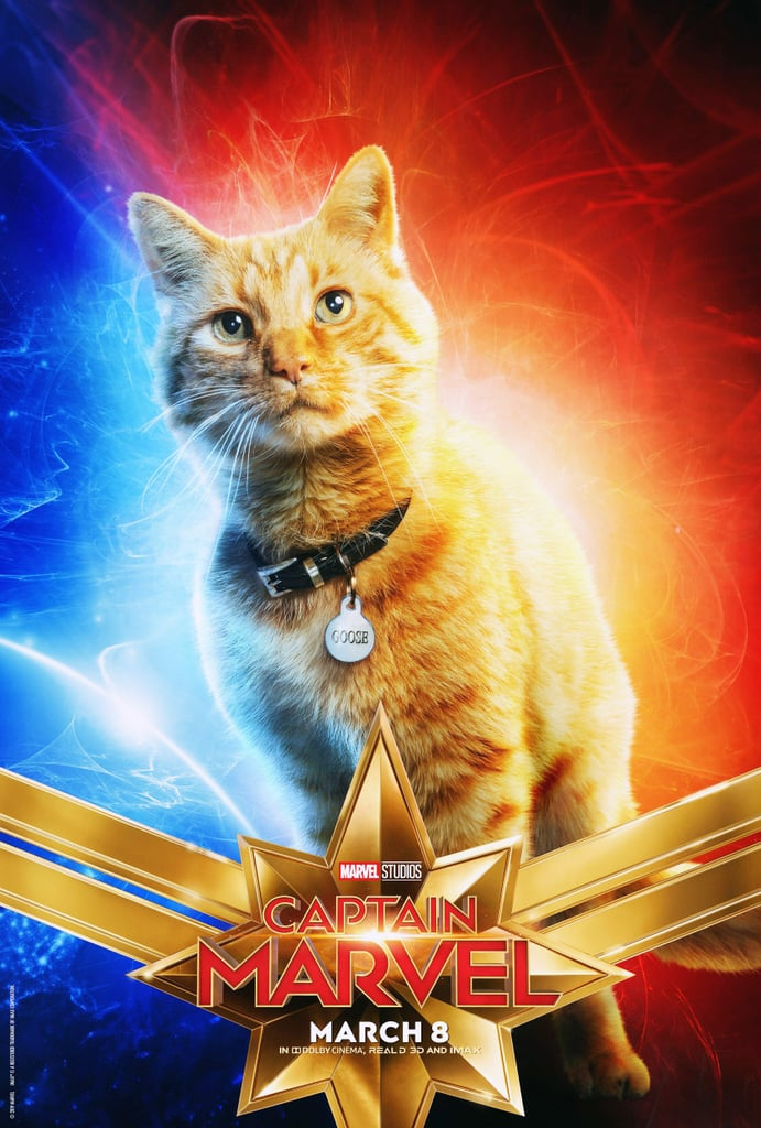 Captain Marvel Cat Photoshop Tweets | POPSUGAR Celebrity