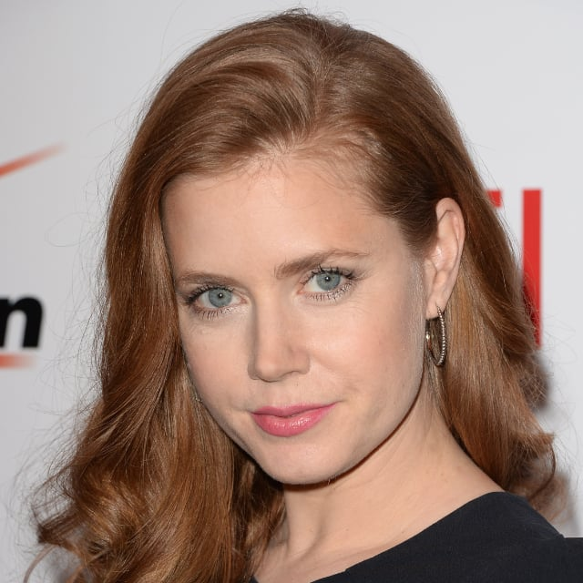 Amy Adams Beauty Look at 14th Annual AFI Awards Luncheon
