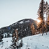 Capricorn: Aspen (Dec. 22 to Jan. 20)