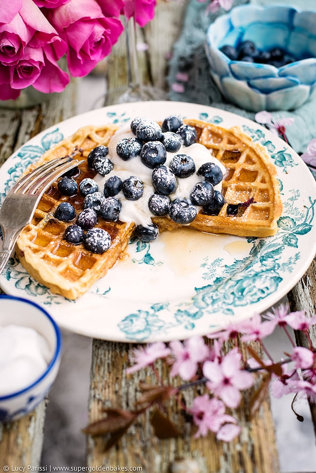 Blueberry Waffles With Whipped Coconut Cream
