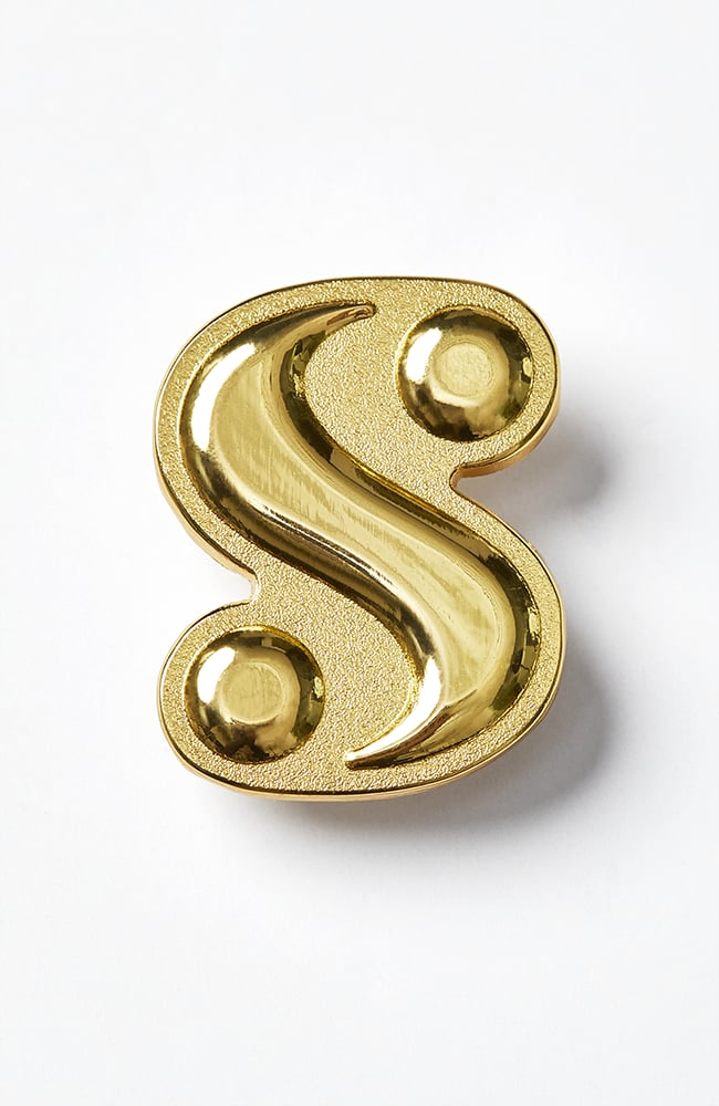"""What Is Your """"S""""? Logo Pin"""