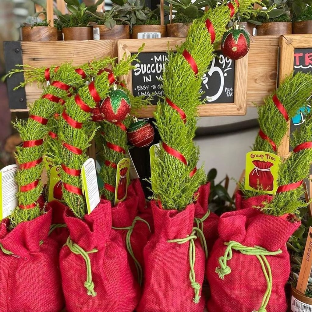 Trader Joe S Grinch Cypress Christmas Trees Popsugar Home
