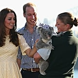 Kate and William met koalas in Sydney in 2014.