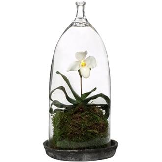 Orchid Cloche, $86