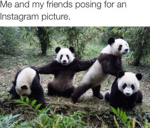 28 Memes That Accurately Describe How Awesome You and Your BFFs Are
