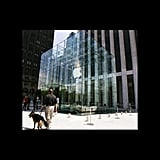 Midtown Apple Store Is Picture Perfect
