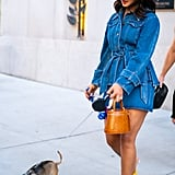 Priyanka Chopra Walking Her Dog With Nick Jonas