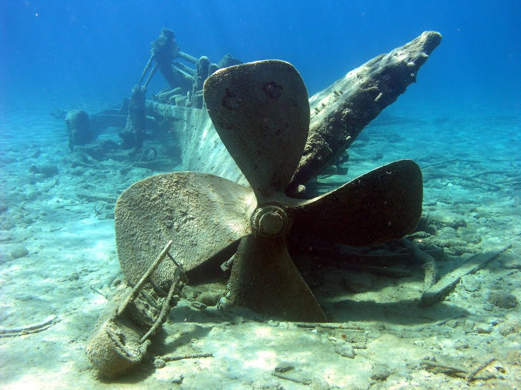 Explore Underwater Shipwrecks in the Philippines