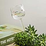 Create a DIY Watering Globe