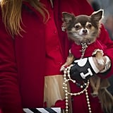 Clearly, this is PFW's best accessory.
