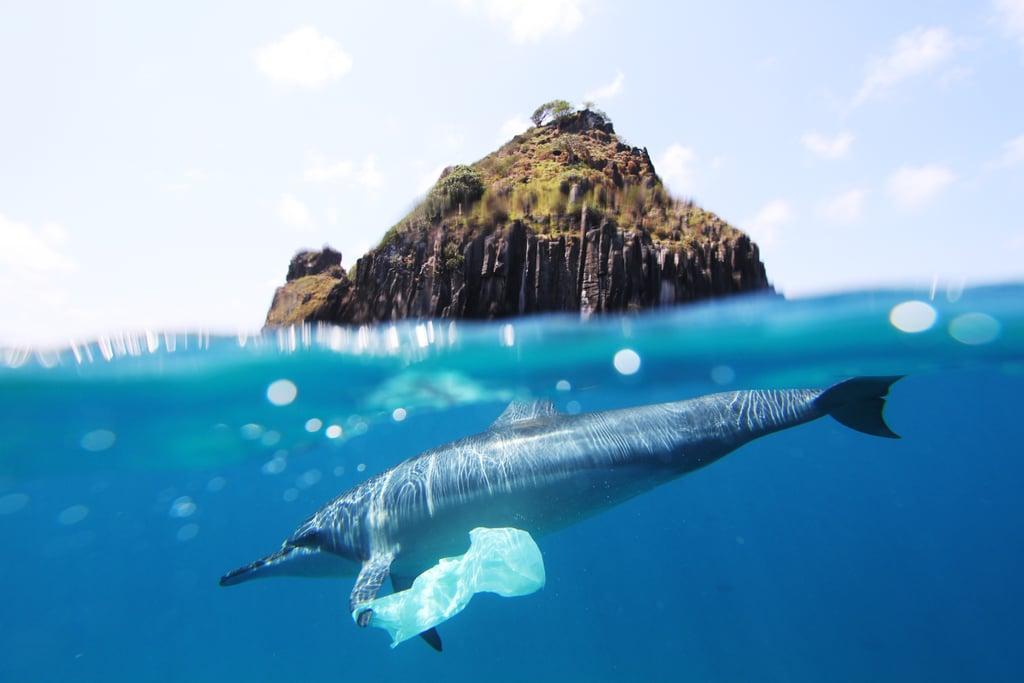 Kevin Murphy Recycled Ocean Plastic Bottles