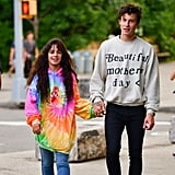 Camila Cabello Wearing a Tie-Dye Hoodie With Shawn Mendes in Brooklyn