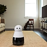 This is Kuri the robot.