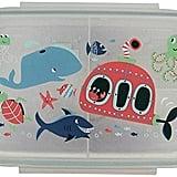 Ocean Lunchbox