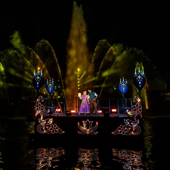 What Is Disneyland's Fantasmic Like?