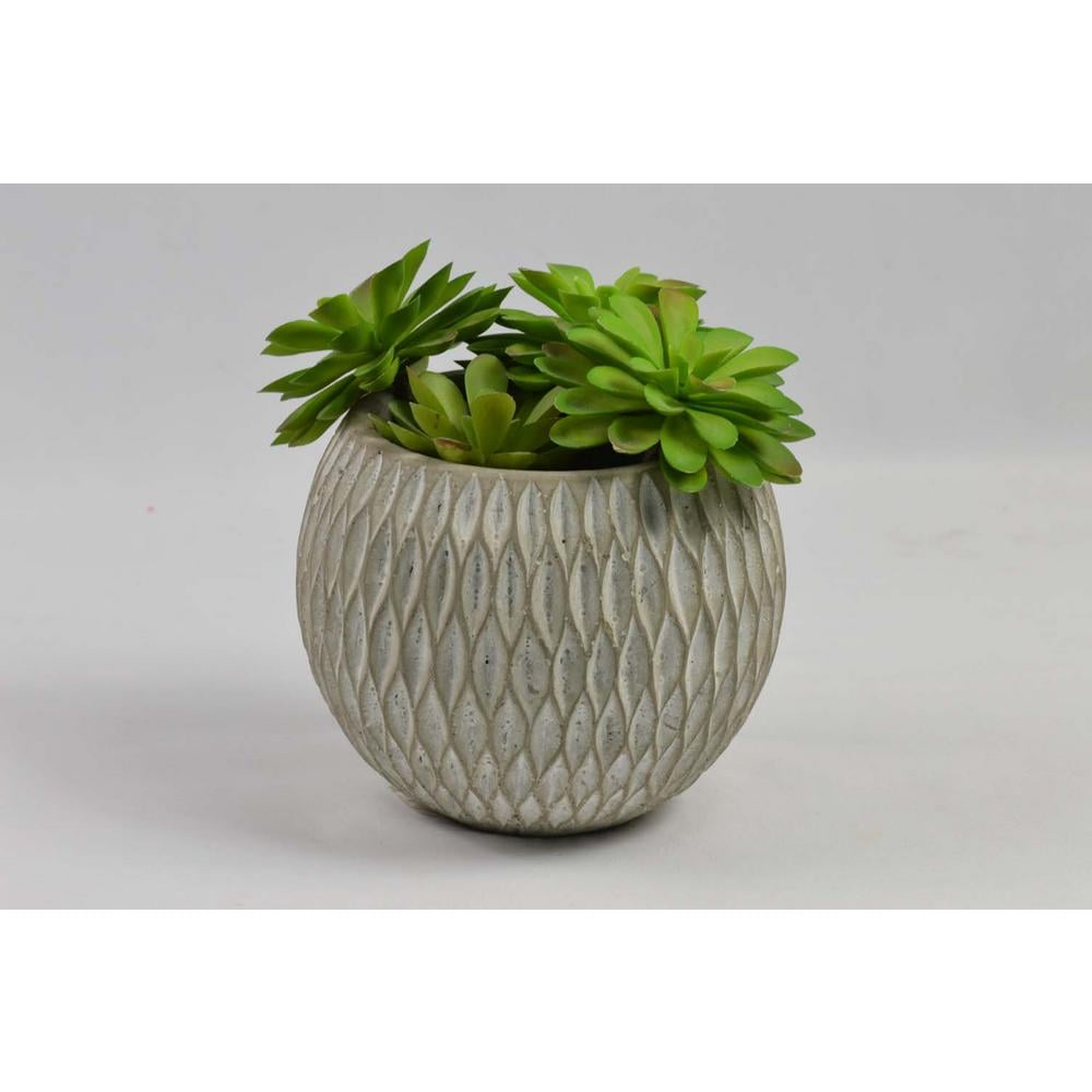 4 in. Faux Succulents in Rounded Cement Pot