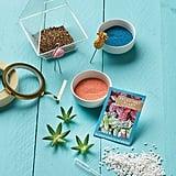 Creativity For Kids Tropical Terrarium Kit