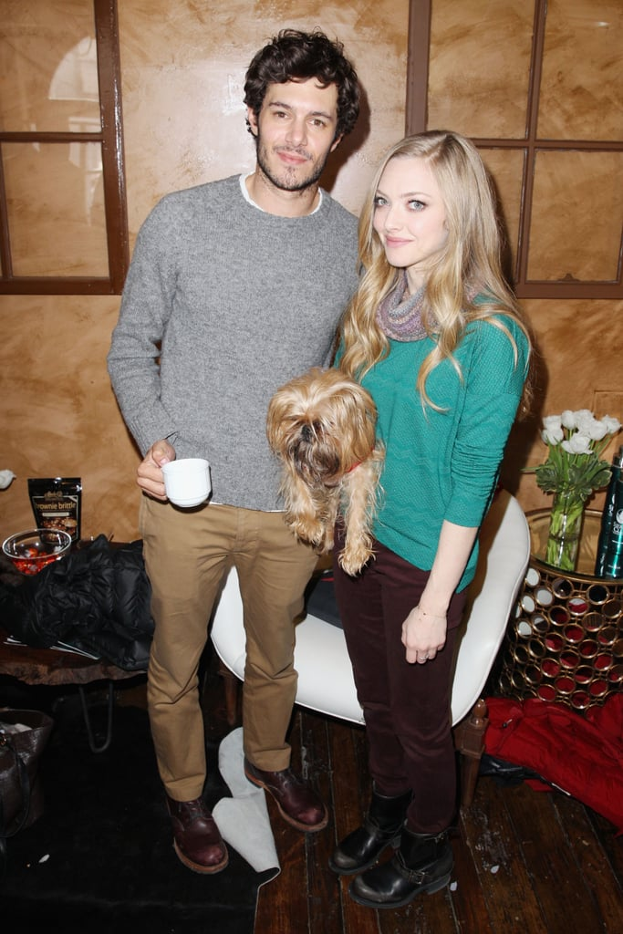 Adam Brody and Amanda Seyfried posed with an adorable dog as they promoted Lovelace in 2013.