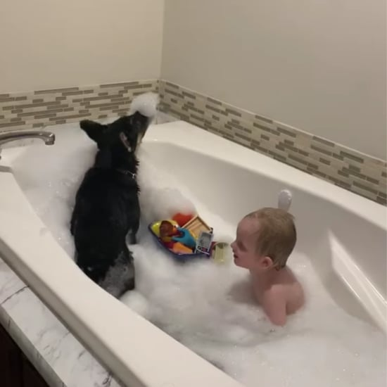 Video of a Dog Jumping the Into Bathtub With a Toddler