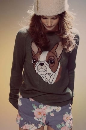Wildfox Couture Bulldog Party Sweater in Pine ($220)