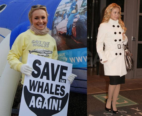 Hayden Panettiere Save the Whales Again Rally