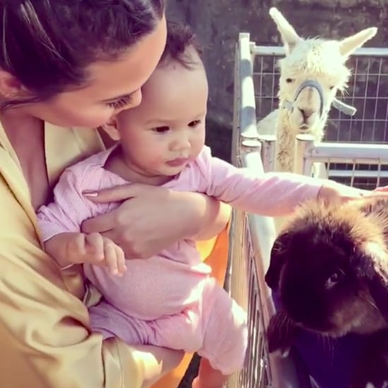 Chrissy Teigen and Luna Petting a Bunny Instagram Video