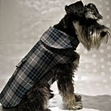 City Chic Plaid Dog Coat, $40-$50