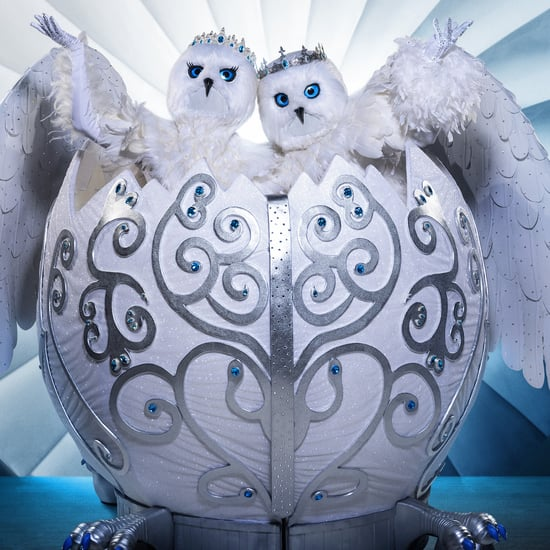Who Are the Snow Owls on The Masked Singer Season 4?