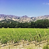 Have a Wine Country Weekend