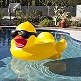 Derby Duck ($53)