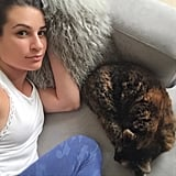 "Lea Michele had a ""cozy Saturday"" over the long weekend."