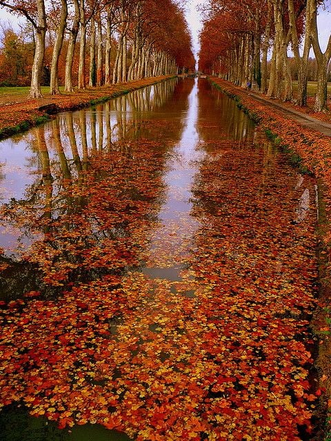 Canal de la Garonne, France