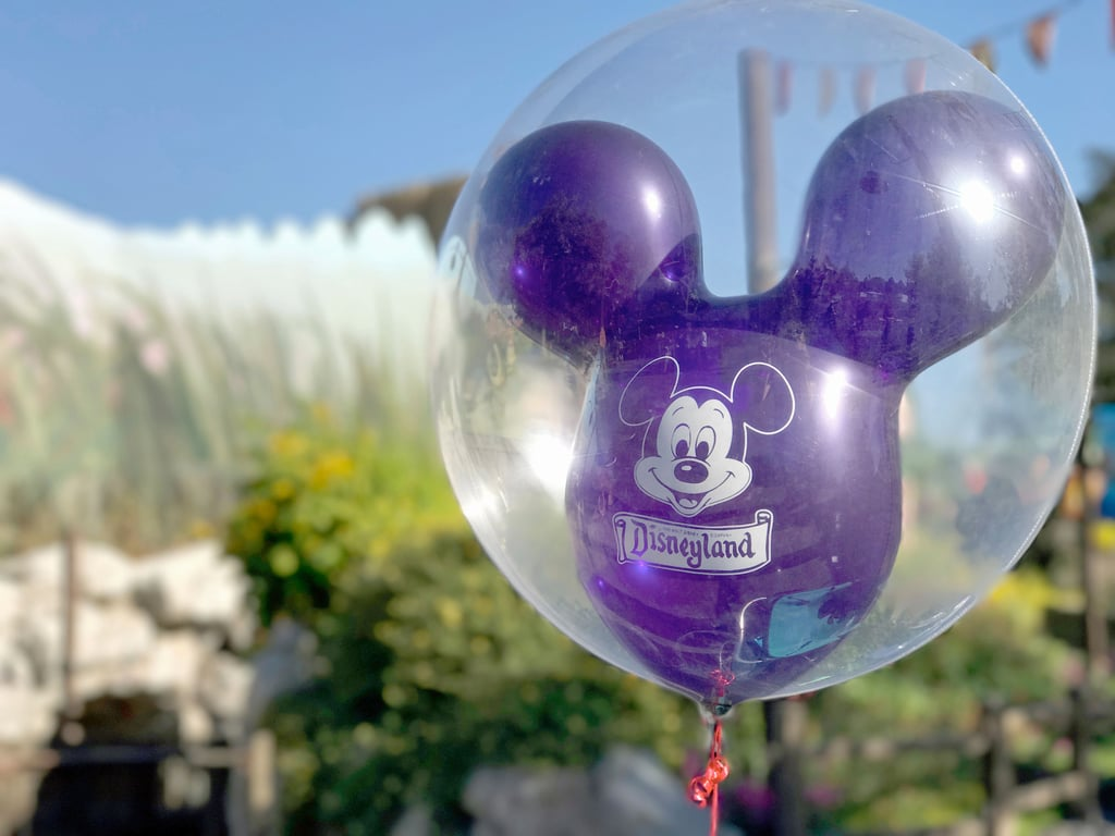 How to Do Both Disneyland Parks in One Day