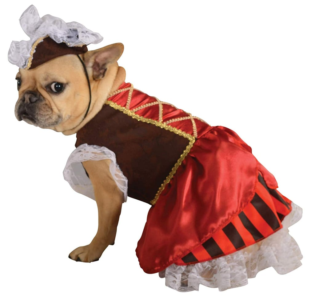 Pirate Girl Pet Costume