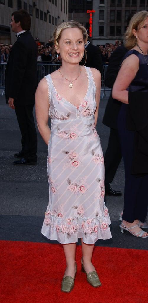 Amy Poehler, 2002