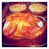 Turkey Overload