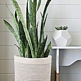 Woven Cotton Rope Plant Basket