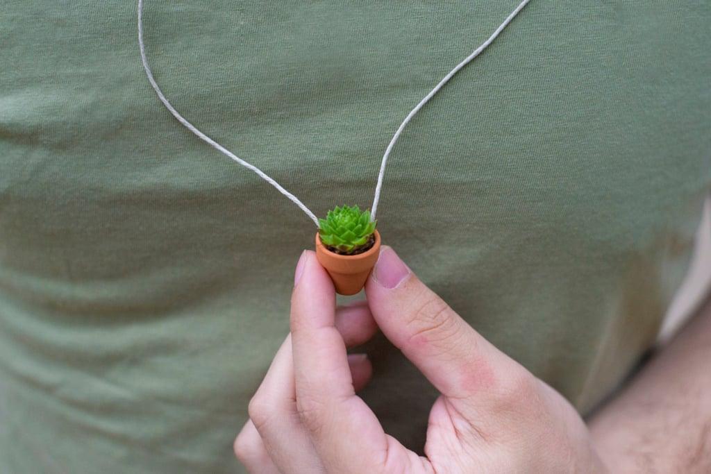 Mini Succulent Planter Necklaces