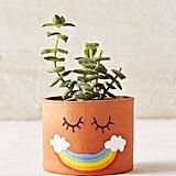 Smile Rainbow Planter
