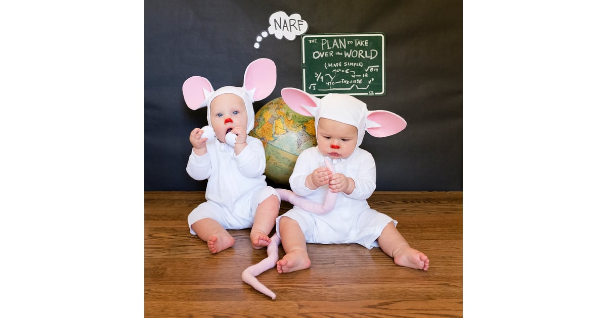 Pinky And The Brain Animaniacs Pop Culture Costumes For Siblings