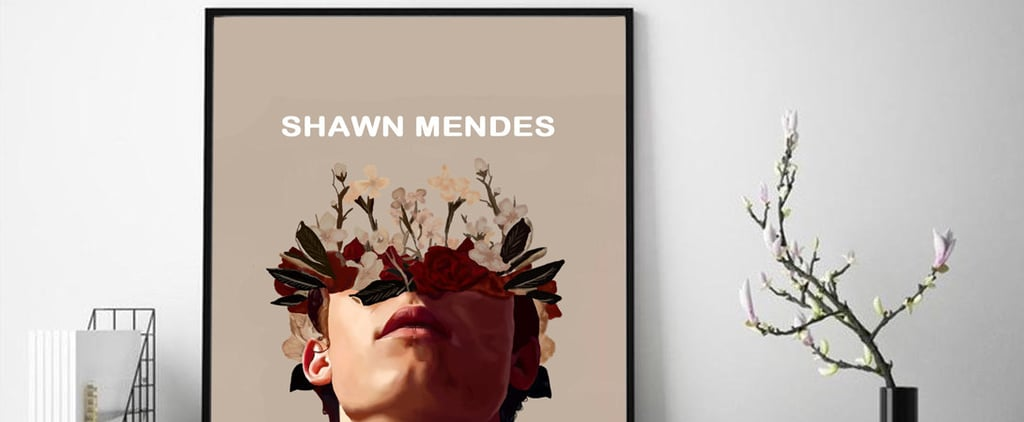 Gifts For Shawn Mendes Fans